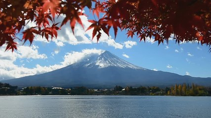 Wall Mural - Autumn Season and Fuji mountain at Kawaguchiko lake, Japan.