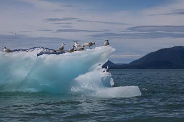 Beautiful iceberg nature's works of art