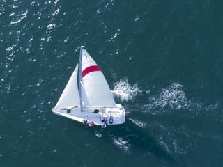 帆に風を受け海を渡るヨット