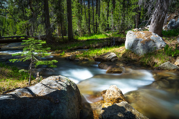 Beautiful Flowing Mountain Creek in Yosemite National Park