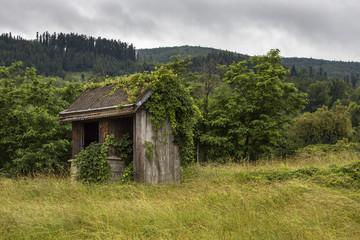 Old abandoned barn on the edge of the forest in summer