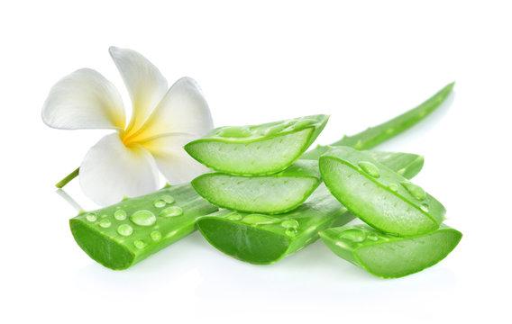 aloe vera fresh leaf. isolated on white background