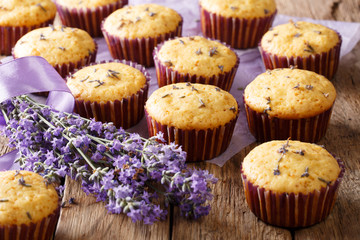 Beautiful background of French muffins with lavender flowers close-up. horizontal