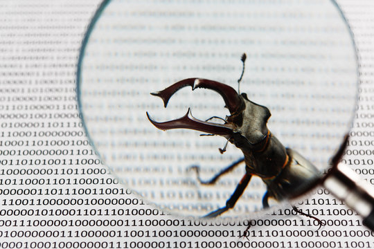 Bug's search in programm code. Testing software, quality assurance.