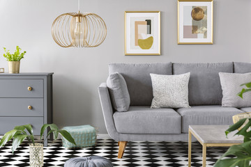 Two patterned cushions placed on grey sofa standing in bright living room interior with fresh plants, wooden cupboard, gold lamp and two simple posters on the wall