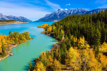 Abraham Lake with turquoise water