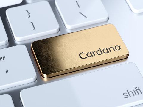 Cardano computer keyboard button