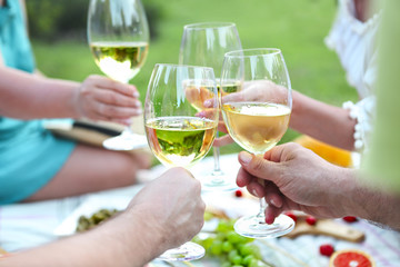 People toasting wineglasses on picnic