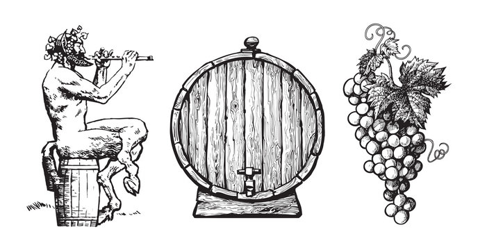 Hand drawn elements for wine design. Satyr, barrel, bunch of grapes. Vector.