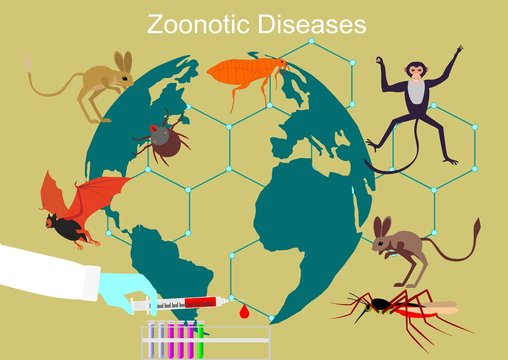 Zoonitic deseases spread in the world concept vector illustration