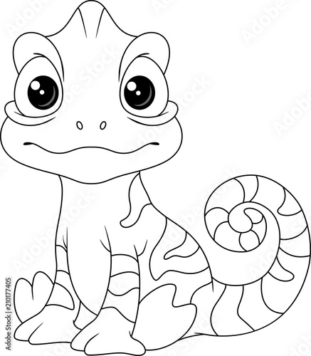 Chameleon Coloring Page Stock Image And Royalty Free Vector Files