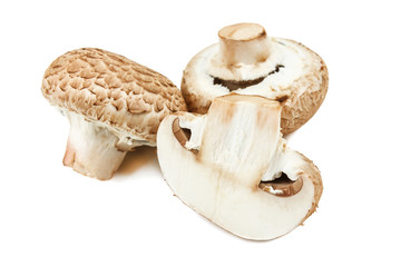 raw common mushrooms on white