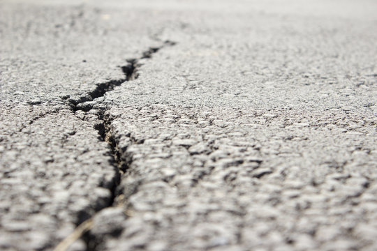 Left sided, close detail of a pavement crack in a park. Picture taken at surface level.