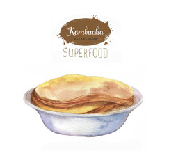 Hand drawn watercolor tea mushroom kombucha in the plate. Isolated on the white background. Super food.
