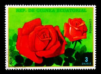 Soraya, Flowers (IX) Roses serie, circa 1979