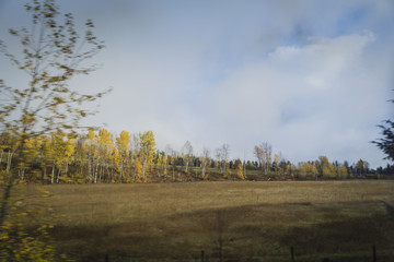 Autumn panorama on cloudy day
