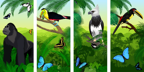 Vector Jungle rainforest vertical baner with male gorilla, pale-mandibled aracari toucanet,  harpy eagle , rainbow-billed toucan and morpho butterflies Wall mural