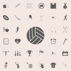 volleyball icon. Detailed set of Sport icons. Premium quality graphic design sign. One of the collection icons for websites, web design, mobile app
