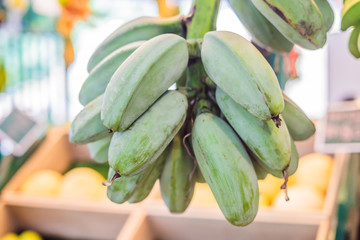 Thick bananas are sold on the market in Asia