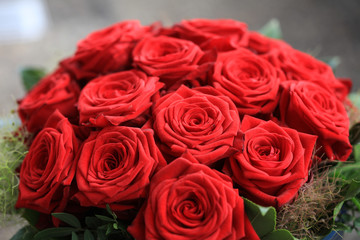 A Bouquet of wonderful red Roses