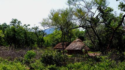 Landscape of the Village of Hamar tribe, Turmi , Ethiopia
