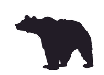 bear, silhouette, vector