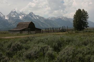 Barn around The Grand Teton National Park 13