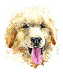 Funny dog. cute puppy watercolor hand drawn illustration.