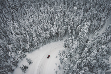 Aerial view of a car driving through the Mt Hood National Forest, Oregon.