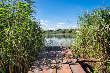 Old wooden bridge over the rural lake. Wild reeds on the lake edge. Small country houses among trees on distant side. Sunny summer day. Beautiful natural scene.