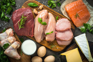 Animal protein sources- meat, fish, cheese and milk.