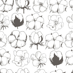 Vector seamless pattern with cotton plant flower. Line illustration of cotton flowers.