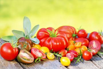 Tomatos, Tomaten, frisch, Vielfalt, auf Brett, Salbei, Textraum, copy space