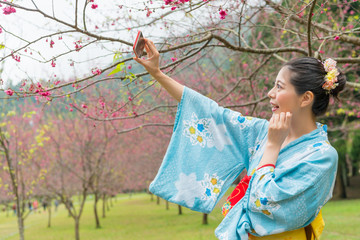 Asian woman take selfie under the cherry tree