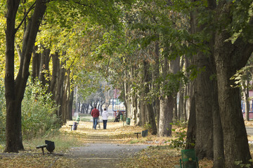 The couple with a baby stroller in the depths of a colorful autumn park's alley