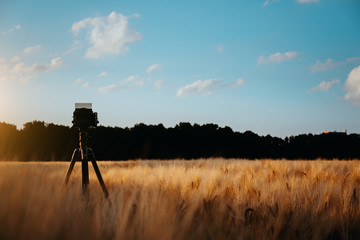 camera on tripod capturing landscape in wheat field, silhouette on sunset sky with whie moving clouds in background