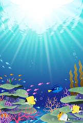 海の中の風景 珊瑚礁 サンゴ礁