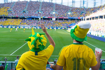 Fans of the Brazilian national team admire the beautiful and interesting match.