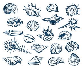 monochrome collection of various seashells