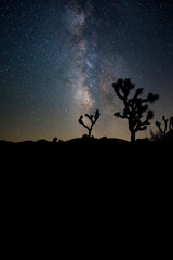 The Milky Way Cloud Over Joshua Tree National Park