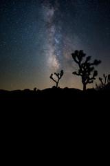 The Milky Way Cloud Over Joshua Tree National Park