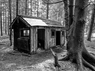 Häuschen im Wald