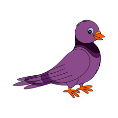 Pigeon cartoon illustration isolated on white background for children color book