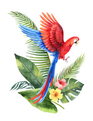 Watercolor vector card with red parrot, tropical leaves and flowers isolated on white background.