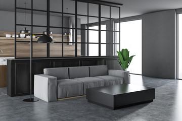 White and black living room corner, gray sofa