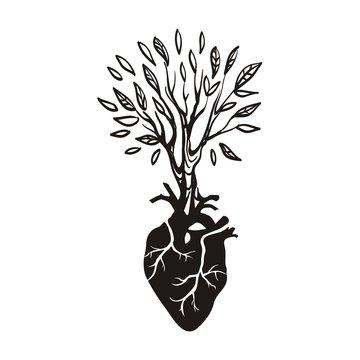 Дерево и сердце