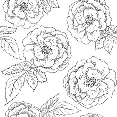 Rose flowers and leaves print. Black and white illustration. Vector seamless pattern. Linear botanical design. Floral graphic. Nature summer plants.