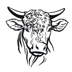 bull head. vector illustration on white