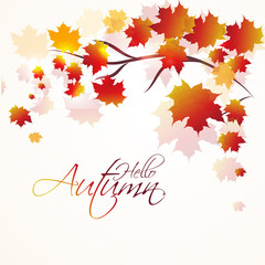 nice and beautiful abstract or poster for Autumn with nice and creative design illustration.