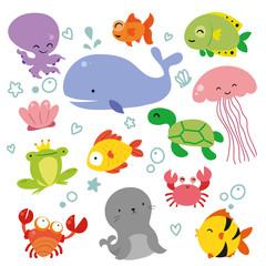 ocean vector collection design